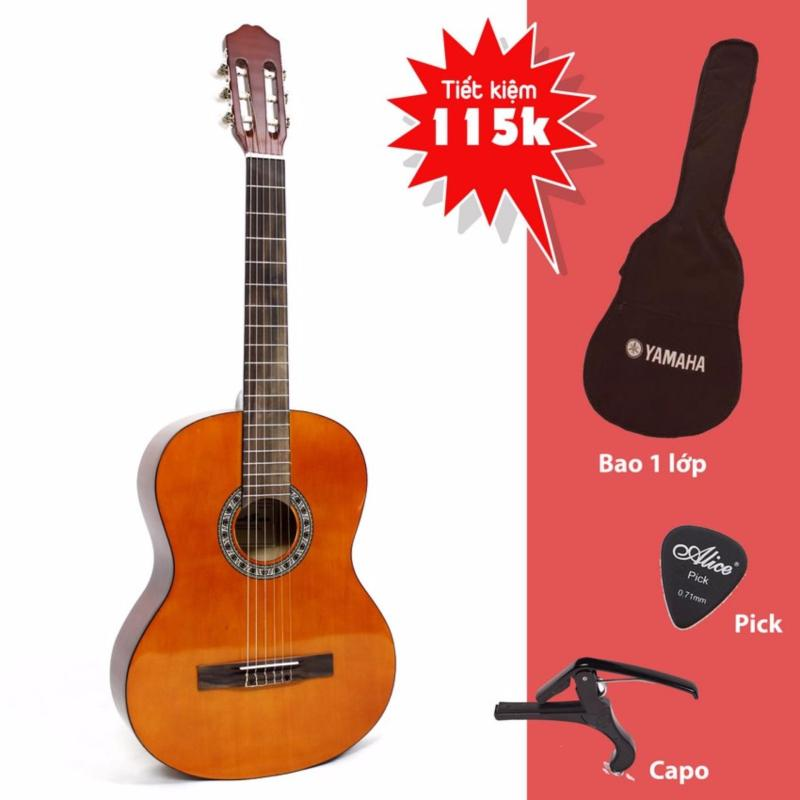 Mua Đàn Guitar Classic RG3920 cho người mới tập chơi