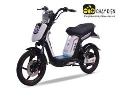 Xe đạp điện Cap A2 Fuji