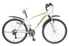Xe đạp thể thao Asama MTB 2604 (Trắng)