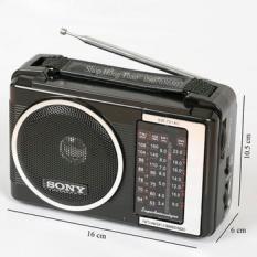 ĐÀI RADIO WS – 701