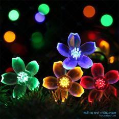 Đèn nháy năng lượng mặt trời hoa anh đào