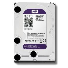 Ổ cứng gắn trong HDD Western Digital Purple 3TB, SATA 3, 64 Cache – Ổ cứng chuyên dụng cho Camera