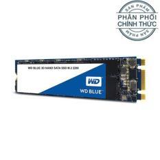 Ổ cứng SSD Western Digital Blue 3D-NAND M.2 2280 SATA III 250GB WDS250G2B0B – Hãng Phân Phối Chính Thức