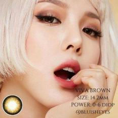 COMBO 2 LENS + NƯỚC NGÂM Kính áp tròng – Lens NÂU TÂY Hàn Quốc Vassen