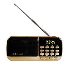 [Miễn Phí Ship] Đài Radio MP3 USB, máy nghe nhạc cầm tay Walkman – B871