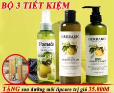 Bộ 3 TINH DẦU pomelo, DẦU GỘI và DẦU XẢ vỏ bưởi và bồ kết Herbario 270ml x 2 giúp chăm sóc tóc