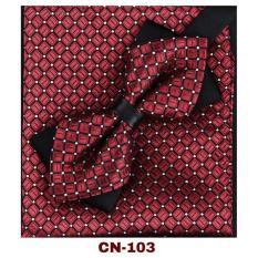 COMBO Nơ cài cổ áo và Khăn cài túi áo Vest thời trang CN-101 {Phụ Kiện Áo Vest Nam V-Smile VietNam}