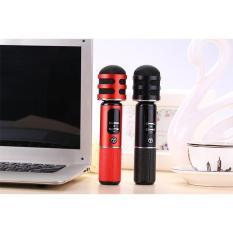 Micro Karaoke Kèm Loa Tosing 05