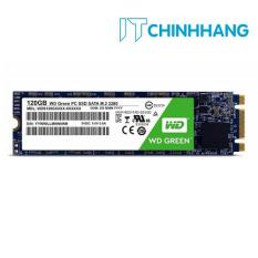 Ổ cứng SSD Western 120GB Green Chuẩn M.2(WDS120G2G0B)