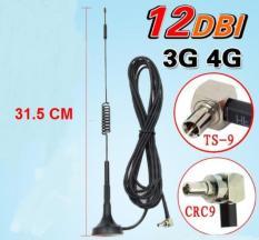 Anten thu sóng 3G 4G cho bộ phát wifi từ SIM 3G 4G chuẩn TS9/CRC9 12dB