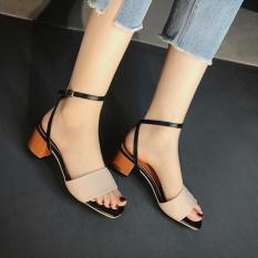 Sandal gót sơn mẫu hot nhất hiện nay