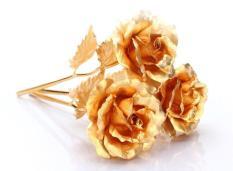 Hoa Hồng Mạ Vàng 3D
