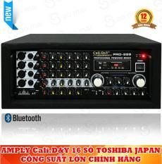 Amply Bluetooth Sân Khấu Karaoke Hội Thảo Gia Đình Cali.D&Y PRO-999 ( Tặng 2 Micro không dây )