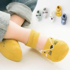 Combo 5 đôi tất khoét chân cho bé trai và bé gái