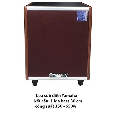 Loa sub điện AM - 1200 Karaoke