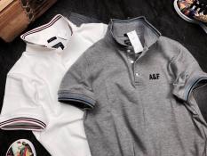 áo thun nam cotton 4 chiều cao cấp 2019