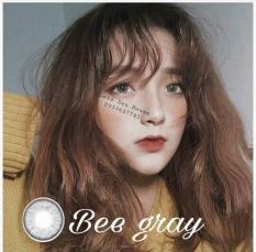 COMBO FULL : NƯỚC NGÂM + NHỎ MẮT + LENS Kính áp tròng – Lens XÁM TÂY Hàn Quốc Vassen ( TẶNG KHAY ĐỰNG )