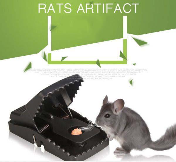 Dụng cụ bẫy chuột thông minh KaiOy