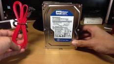 Ổ cứng cho máy tính để bàn Western BLUE 250GB / 320GB / 500GB (kèm dây Sata) Bảo hành 24 tháng 1 đổi 1. HDD WD BLUE,