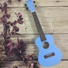 Concert màu xanh dương