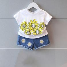 áo thun bé gái, đồ bé gái in hình hoa cúc – có size người lớn