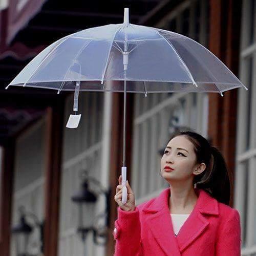 Ô dù trong suốt Hàn Quốc cá tính
