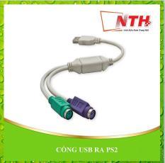 CỔNG USB RA PS2