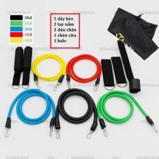 Dây đàn hồi tập Gym S2-11X, bộ dây tập thể lực 5 màu – Bộ 11 chi tiết, dây tập kháng lực 100LB tiêu chuẩn – DONGGIA