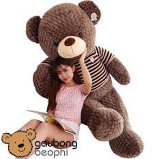 Gấu bông teddy áo len cao cấp khổ vải 1m6, món quà ý nghĩa chuyên dành cho việc tỏ tình, nhân dịp sinh nhật, quà tặng đồ chơi bằng bông an toàn cho bé