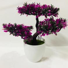 Chậu Bonsai cây nhựa 3 nhánh dáng xòe (Tím Hồng)