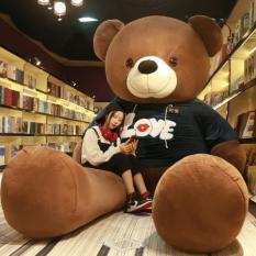 Gấu Ôm Teddy Lớn Quà Tặng Cho Bạn Gái Nhiều Size Lựa Chọn