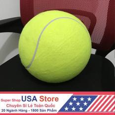 Bóng Tennis Bơm Hơi 24cm ITT1012