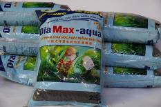 2 Kg Phân nền Dia Max-aqua (tặng hạt giống trân châu lá nhỏ)