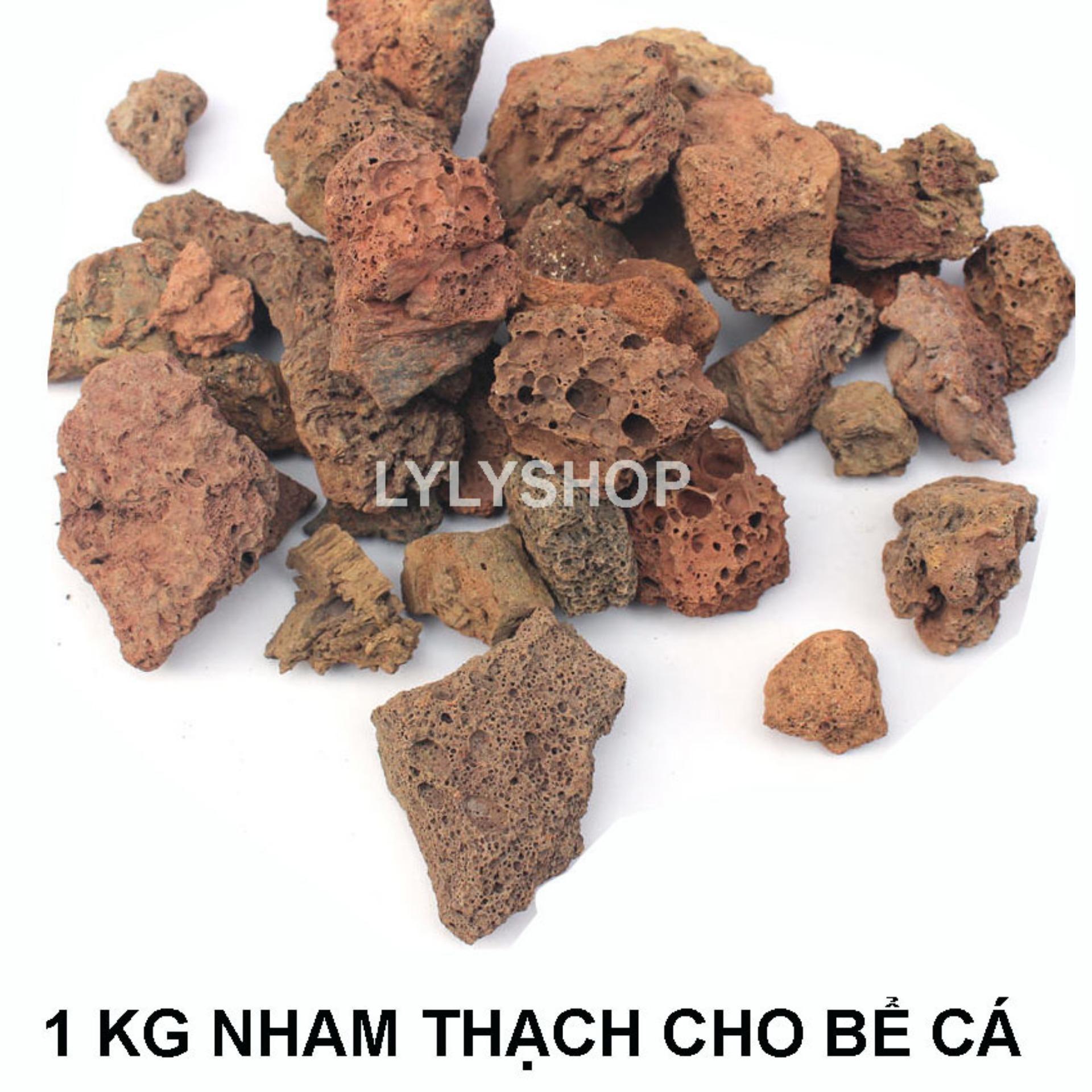ĐÁ NHAM THẠCH (1kg) vật liệu lọc, trang trí bể cá