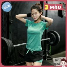 Bộ thể thao nữ Pillow – Cửa Hàng phân phối KIT Sport – Hàng nội địa Trung(Women T-Shirt,Women Short,Set đồ tập quần áo gym, thể dục,thể hình, Yoga, Aerobic,Zumba Fitness)