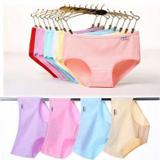 Quần lót nữ thun cotton pulo MS13 combo 5 cái