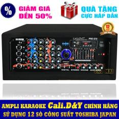 Ampli BLUETOOTH karaoke gia đình Cali.D&Y PRO-979 ( Tặng USB Kingston 8GB )