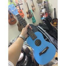 Concert màu ( xanh dương )