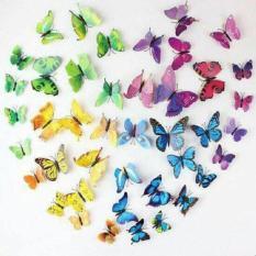 Combo 10 Bộ 12 bướm 3D dán tường loại đẹp