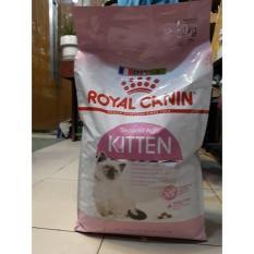 Thức Ăn Hạt khô cao cấp Cho Mèo Royal Canin Kitten 10Kg (Pháp)
