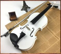 Đàn violin cao cấp Deviser V-30 MB
