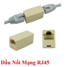 Đầu nối dây cáp mạng Internet / LAN chuẩn RJ45