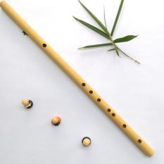 Sáo trúc tone đô ( c5 ) cho người mới chơi sáo chất lượng âm thanh tốt, hình thức đẹp