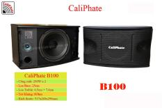 Loa treo tường caliphate bass 25 B100C