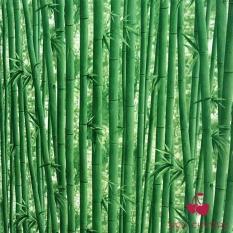 Cuộn 5m giấy dán tường rừng trúc 3D khổ rộng 0.45 m có sẵn keo