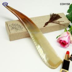 Chiếc Lược sừng khủng nhất – COH158 (Size: XXL – 23-30cm) Được làm từ nửa chiếc sừng bò Châu Phi – Horn Comb of HAHANCO