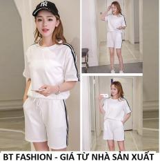 Đồ Bộ Áo Thun Nữ + Quần Đùi Sọt Thun Nữ Thể Thao, Ở Nhà, Đồ Ngủ Thời Trang Hàn Quốc Mới – BT Fashion (ĐBTE01B-3S)