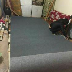10m2 thảm trải sàn