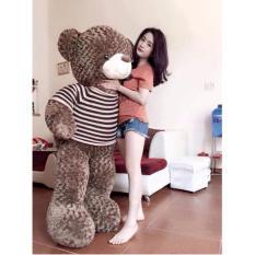 Gấu bông Teddy cao cấp khổ vải 1M8, cao 1m5 màu nâu hàng VNXK-TEDDY18 (nhà bán hàng Diabrand)