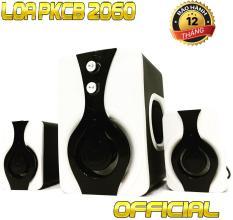 Loa nghe nhạc máy tính, điện thoại Bass ấm PKCB-2060 speakers